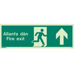 Jalite Allanfa Dan Fire Exit Sign - Up Arrow - 484U