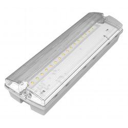 Channel Safety E/SOLENT/M3 LED Bulkhead Emergency Light Fitting