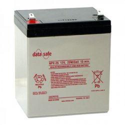 Enersys Datasafe NPX25-12 Battery - 12V 5Ah 23W