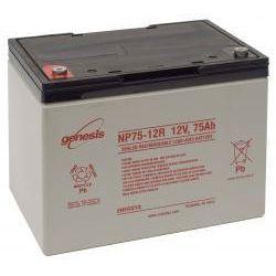 Enersys NP75-12 Sealed Lead Acid Battery - 75Ah 12V