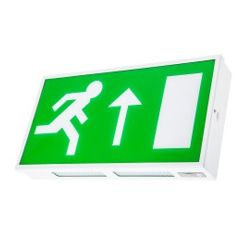 Channel Safety Systems Dale LED Exit Sign Emergency Light Fitting